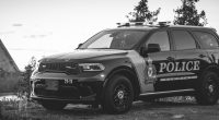 The Timmins Police Service has arrested and charged a local woman with Robbery related offences stemming from an early morning incident that occurred at an […]