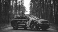 The Timmins Police Service has been made aware of a number of recent incidents involving menacing or threatening behaviors at Covid vaccine clinics. Throughout the […]